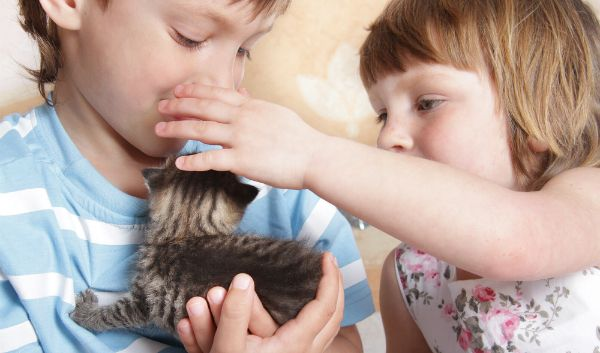 Pets and children