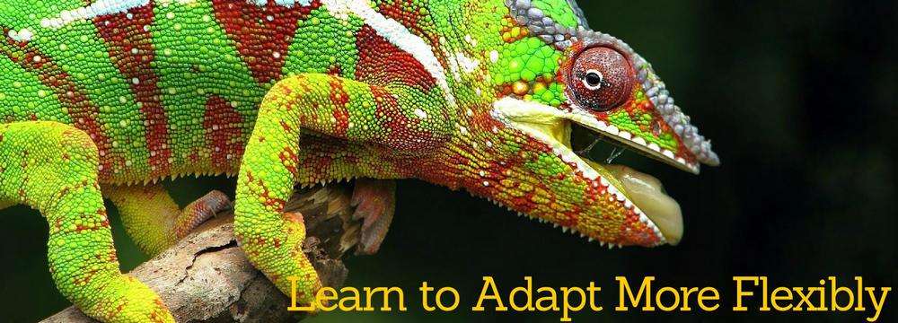 Learn to Adapt More Flexibly to Developing Situations